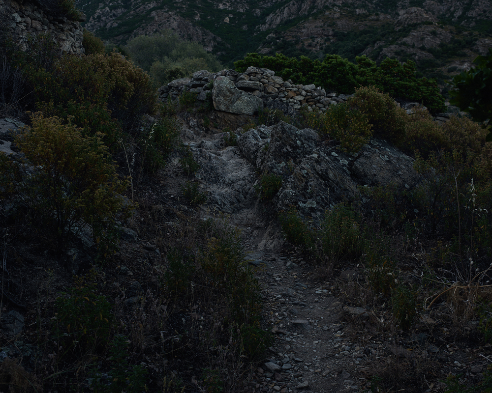 Paths 6.jpg