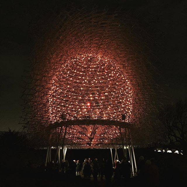 Night hive #lights #kew #christmas #nightime