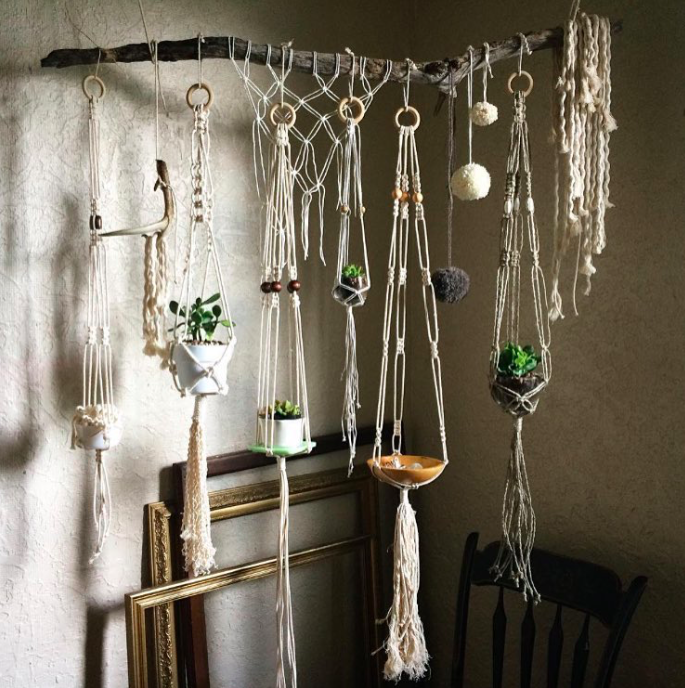 macrame hanging planters on driftwood