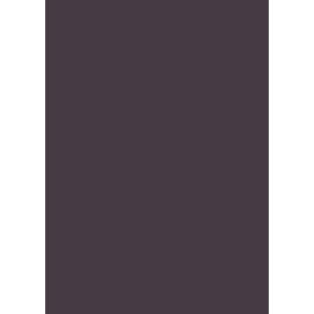 PINK 'R' Member logo CMYK LOW-RES.png