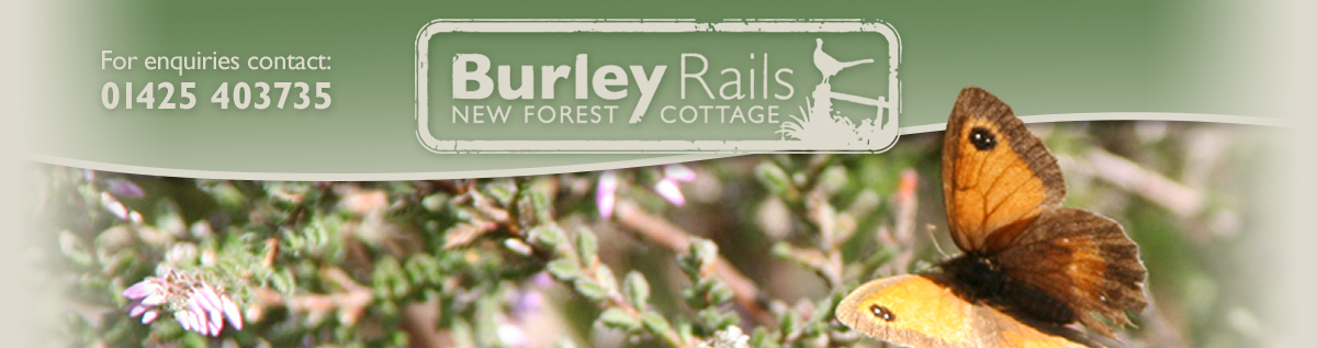 Burley Rails Cottage and Stables