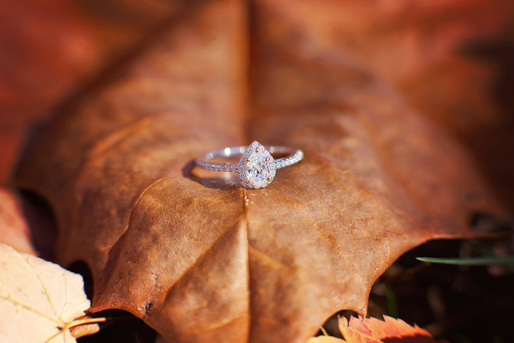 Favorite Ring Shots Bloomington Normal Il Wedding Photographer
