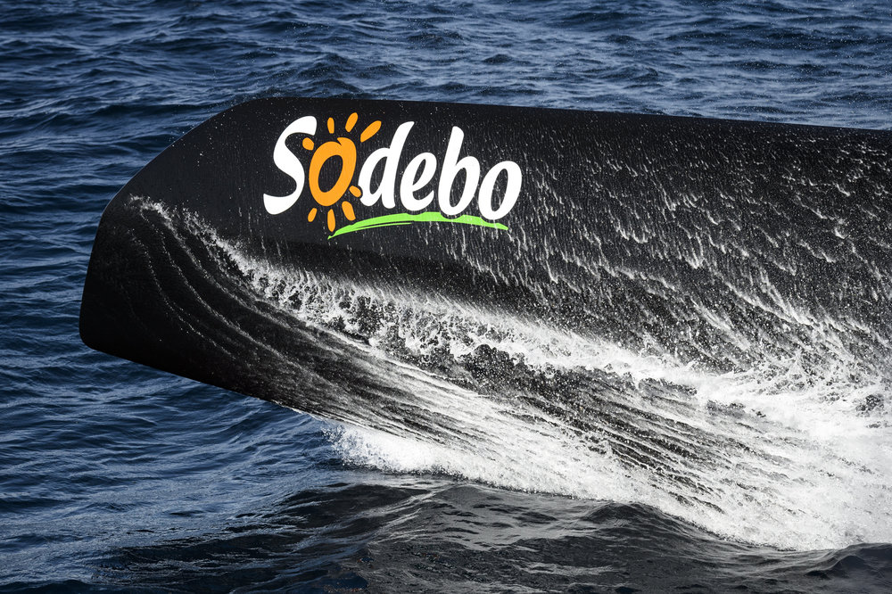 SODEBO-TJV-2017-BASS DEF - 009.JPG
