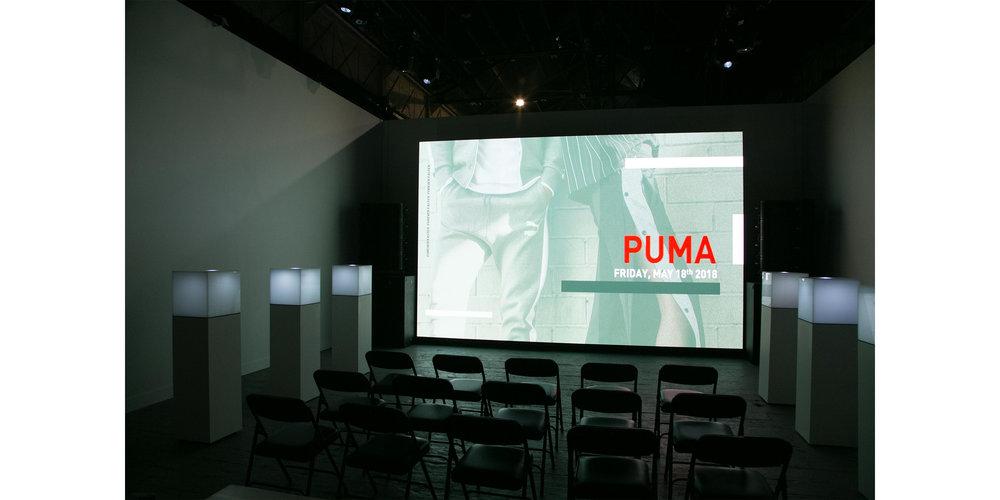 PUMA_04.jpg
