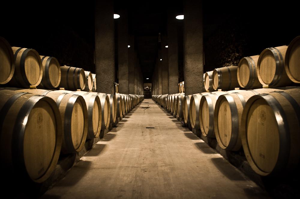 wine_edits-36.jpg