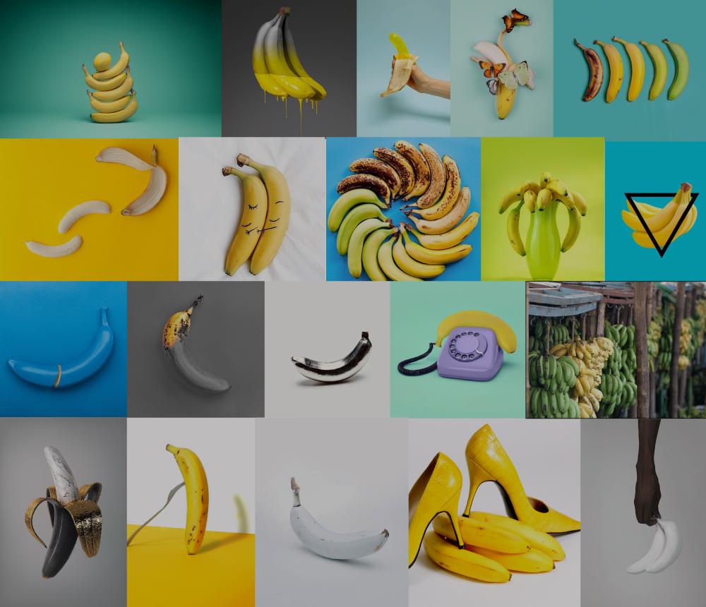 bananacollage_jocelynmandyk