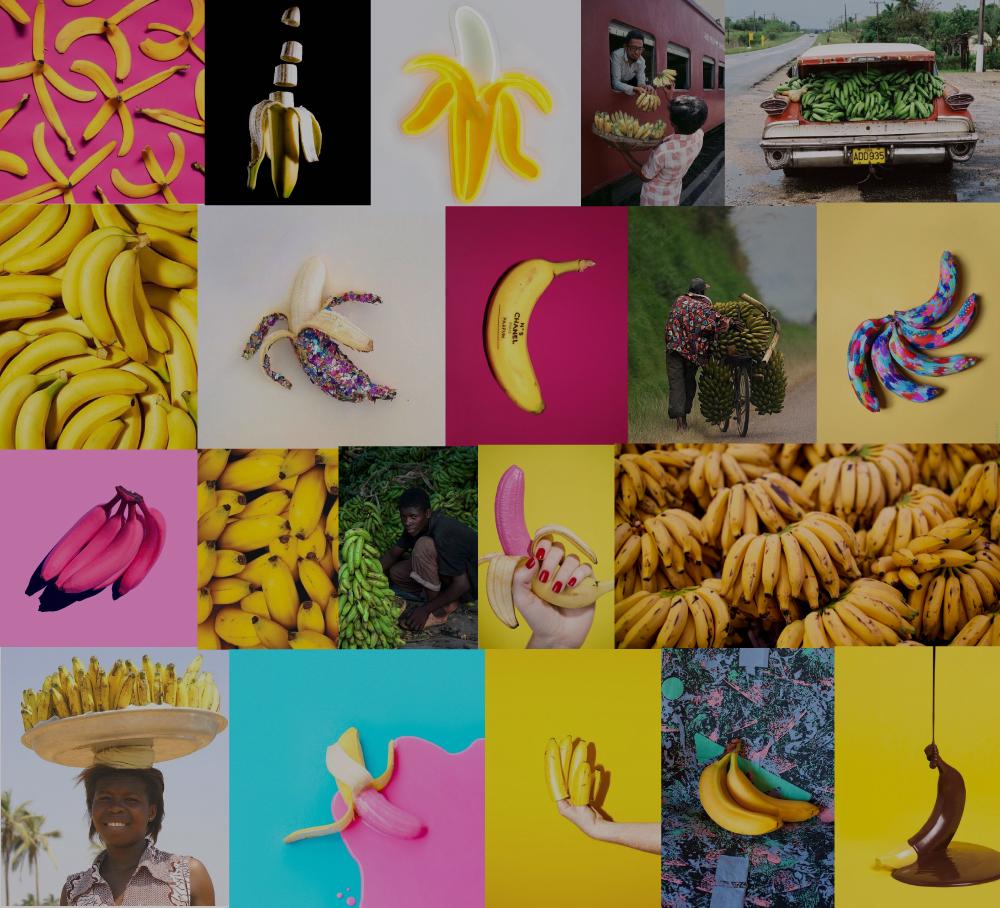 bananacollage3_jocelynmandyk