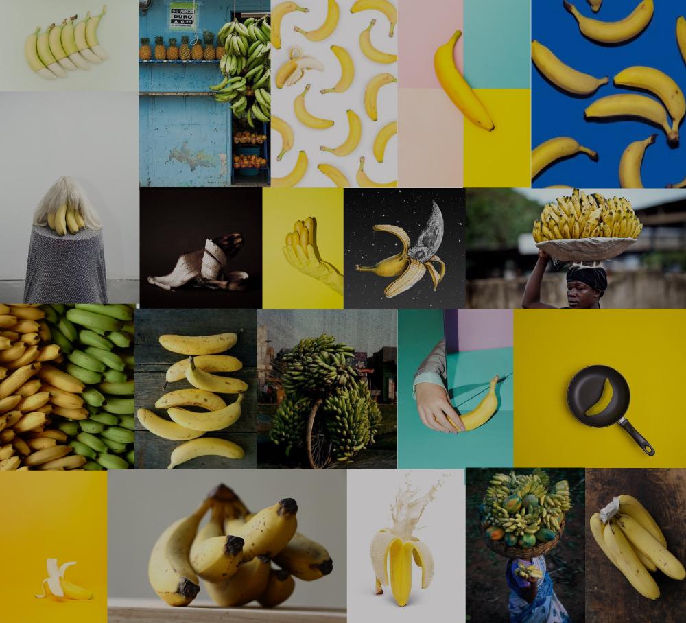 bananacollage4_jocelynmandyk