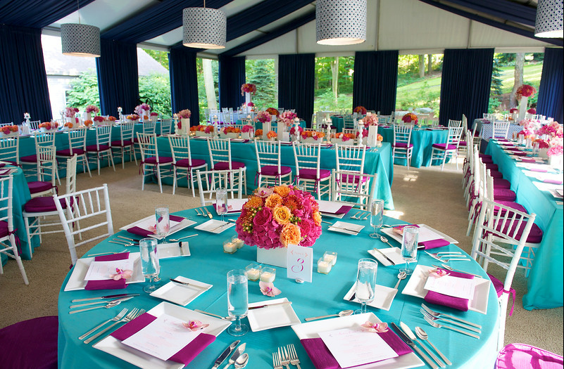 blue striped inspired wedding reception grand haven michigan