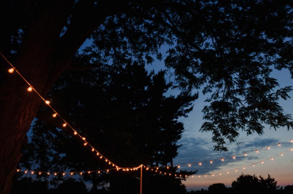 Grand Rapids, Michigan Outdoor Wedding String Lights