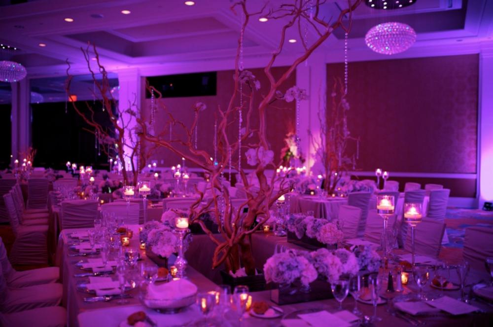 Grand Rapids, Michigan Elegant Wedding Reception with Luxury Decor