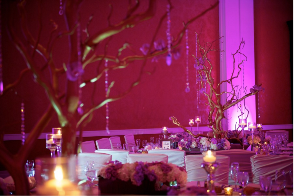 Grand Rapids, Michigan Wedding with Manzanita Branches