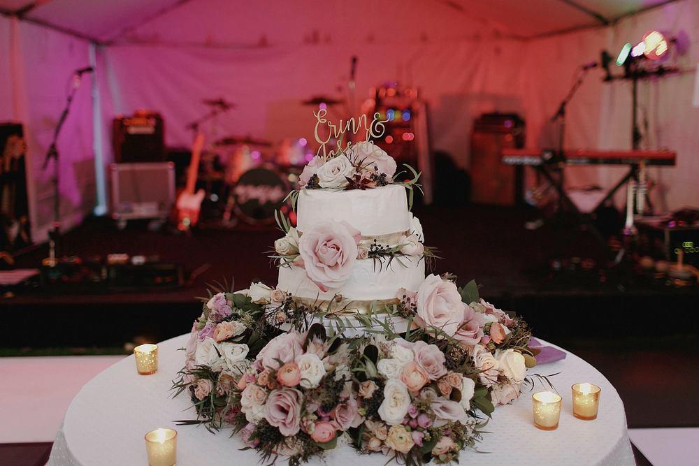 Grand Rapids, Michigan Beautiful Modern Wedding Cake