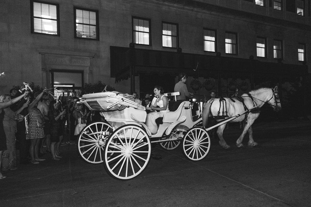 Grand Rapids, Michigan Horse Carriage Wedding Photos