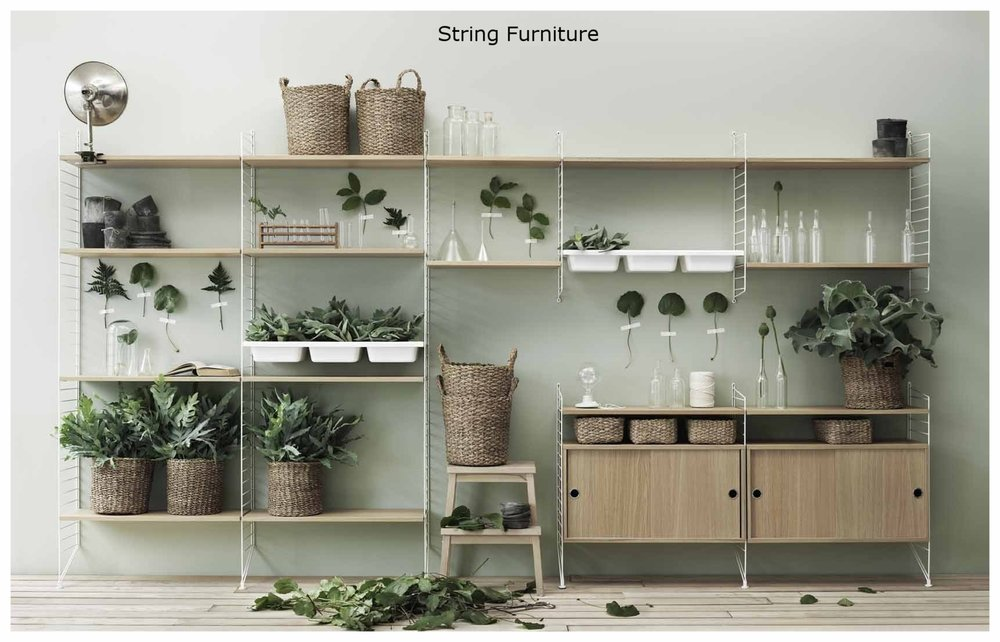 string-lotus-0916.jpg
