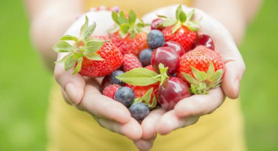berries in hands.jpg
