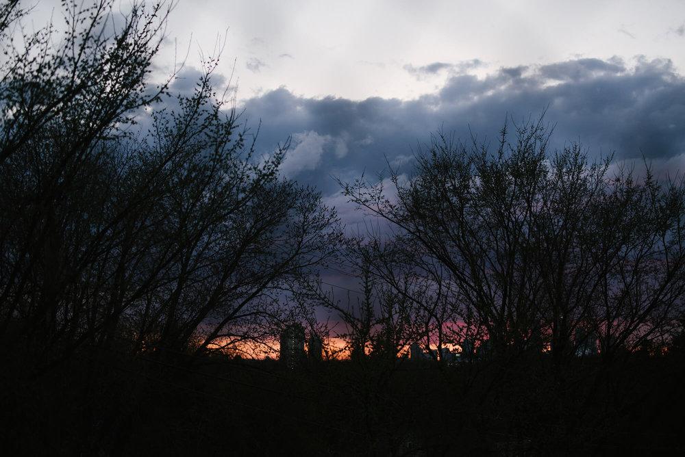 engle-olson-photography-spring-in-minneapolis-9.jpg