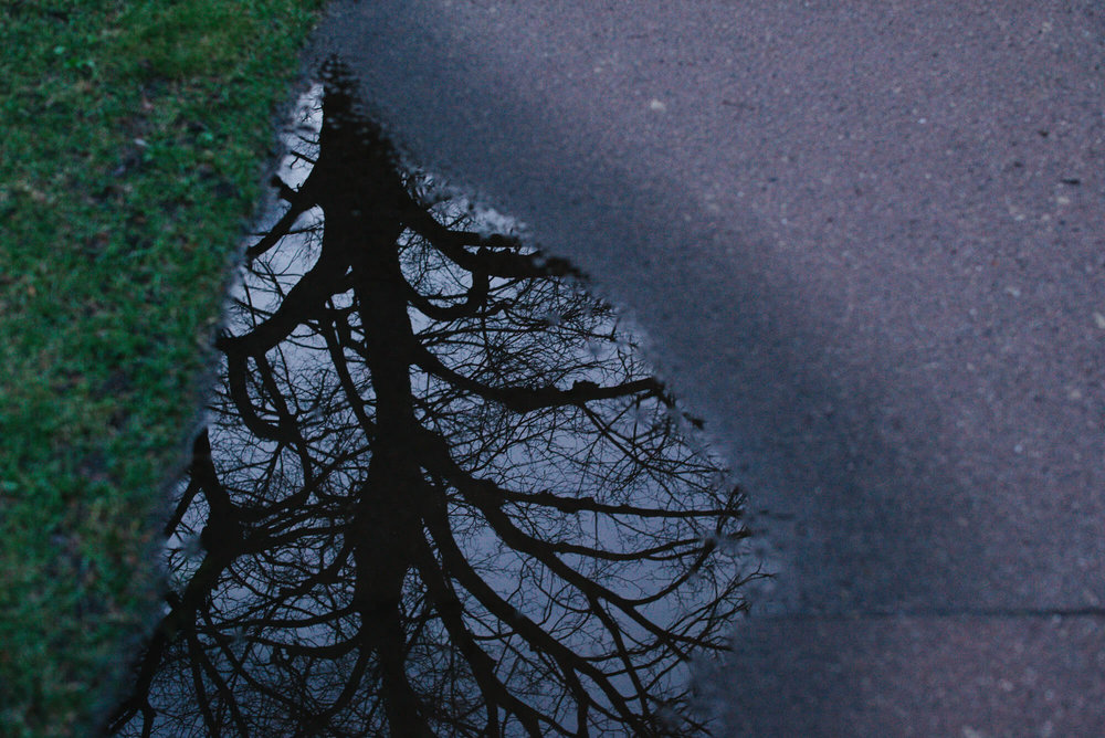engle-olson-photography-spring-in-minneapolis-16.jpg