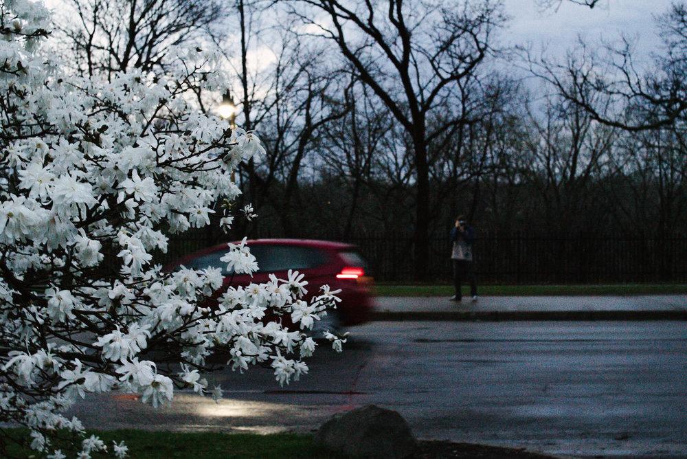 engle-olson-photography-spring-in-minneapolis-17.jpg