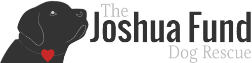 The Joshua Fund, Inc.