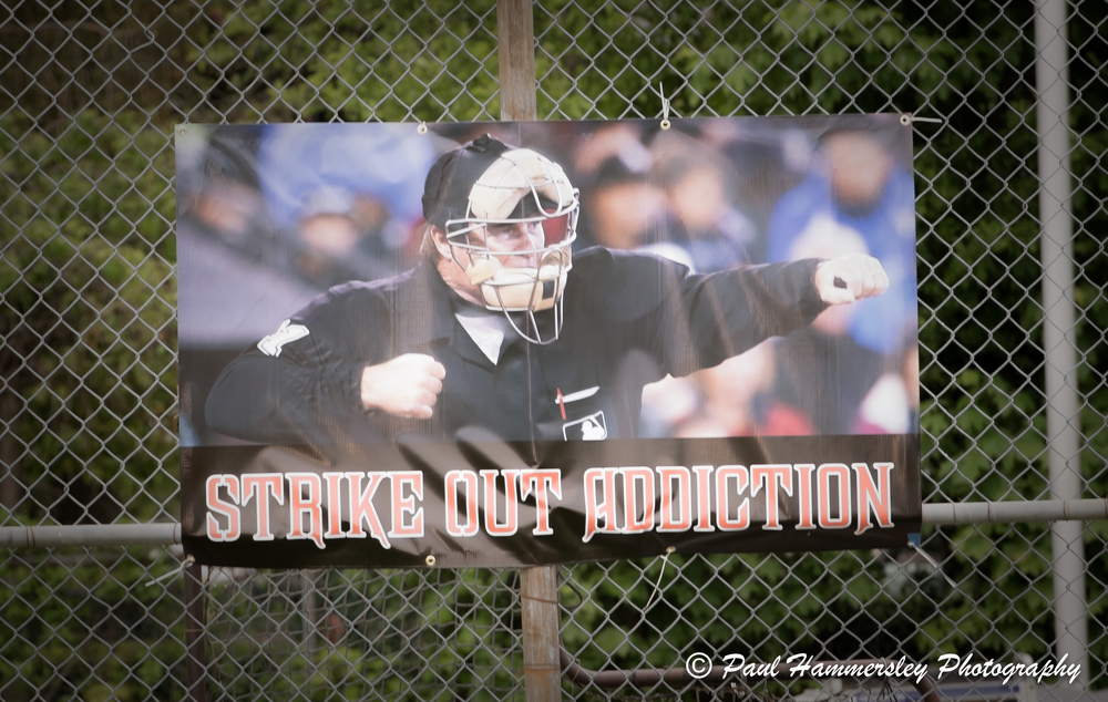 angel-baseballs-strike-out-addiction-in-memory-of-dayne-brandano_27128778081_o.jpg