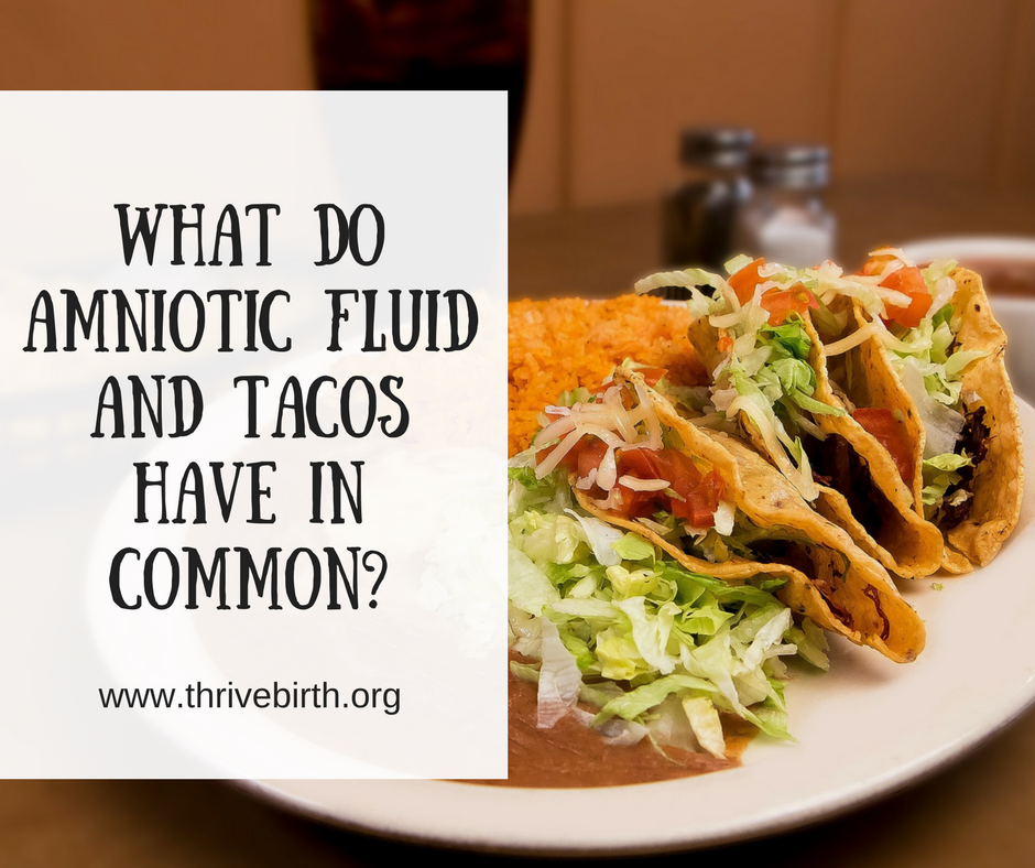 What do Amniotic Fluid and Tacos Have in Common-.png