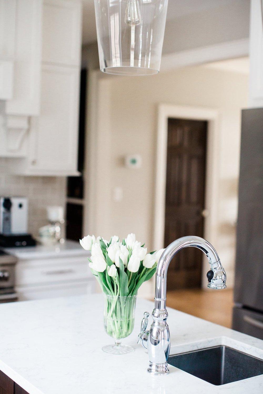 Pleune+Kitchen-31.jpg