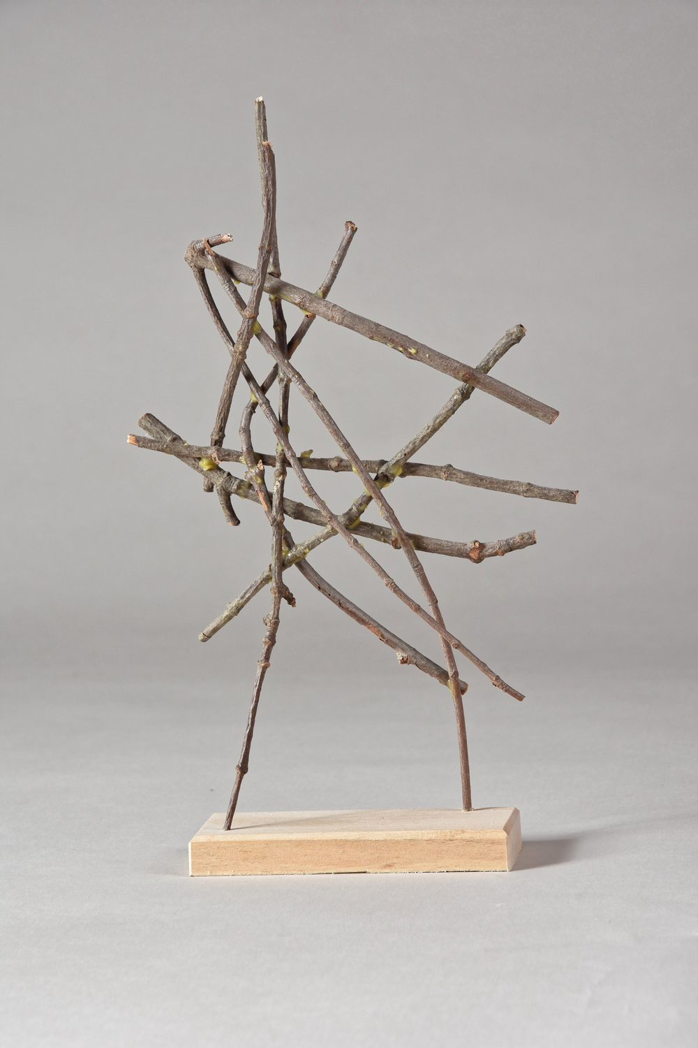 Study , 10 1/2 inches, maple, 2015