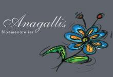 Anagallis.jpg