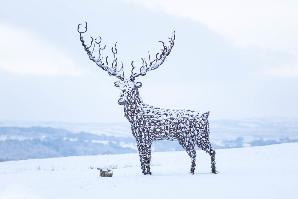 Stag sculpture made out of metal horse shoes standing in the snow at the Derwent Manor Hotel in Allensford, Northumberland