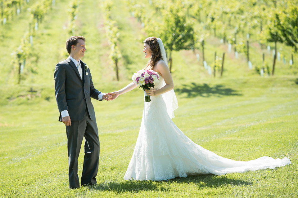h&g_bluemont_vineyard_wedding_003