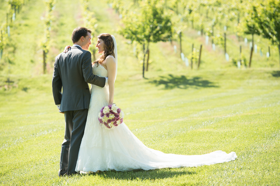 h&g_bluemont_vineyard_wedding_004