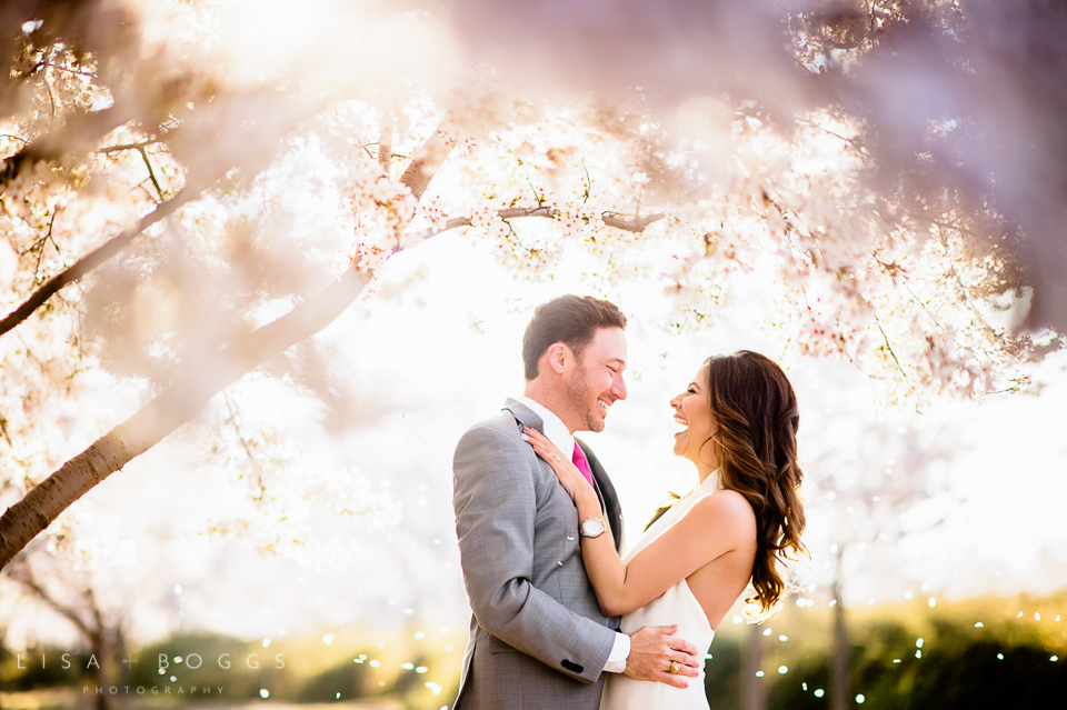 Cherry Blossom Washington, DC Engagement Session