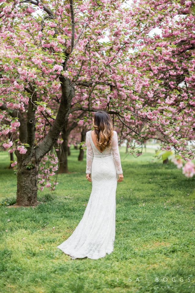 Nicole's DC Cherry Blossom Bridal Portraits
