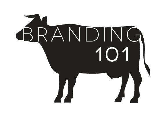 Branding 101 | Akula Kreative | San Diego graphic and web design