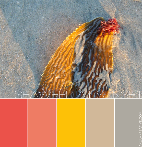 Southern California Color Palette