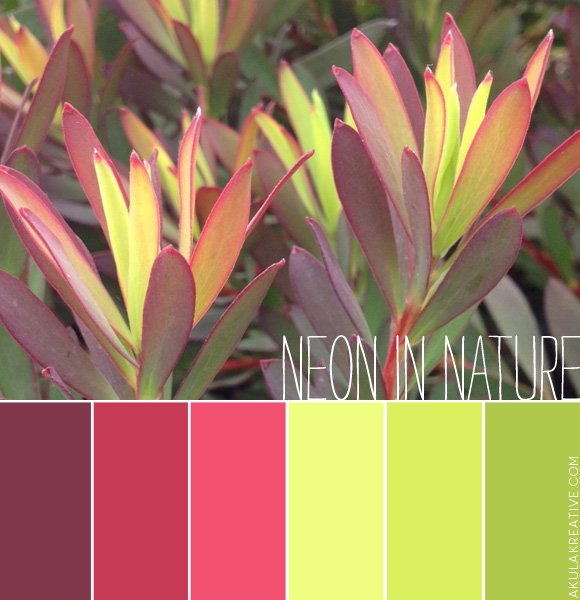 Neon in Nature Color Palette
