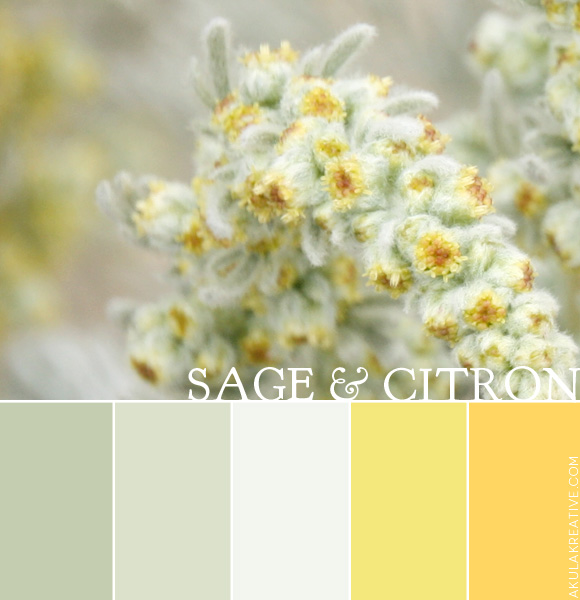 sage and citron color palette