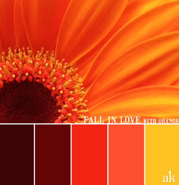 orange fall flower color palette inspiration