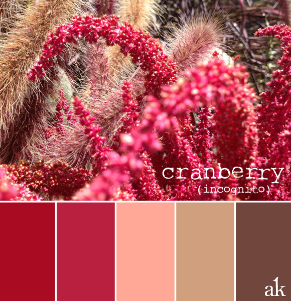 color inspiration | fall cranberry, pink, tan, brown