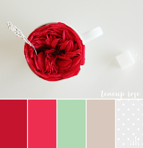 a garden-rose-inspired color palette // red, pink, mint, gray, white, polka dots