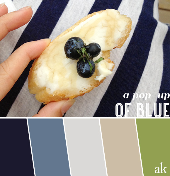 a summer-blueberry-inspired color palette // navy, blue, gray, taupe, green