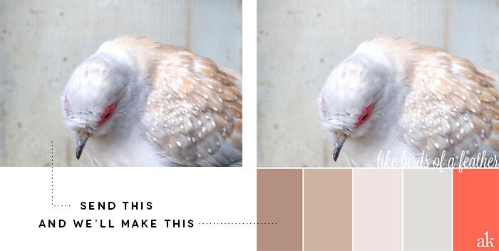 2013-Color-Palette-Photo-Contest-2