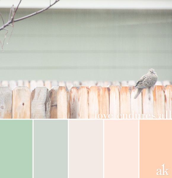 a backyard-dove-inspired color palette // pastels, green, peach