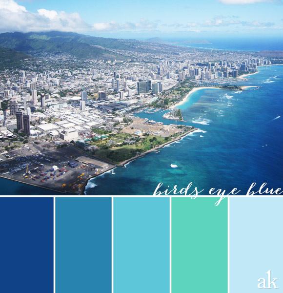 an ocean-inspired color palette // blue, aqua