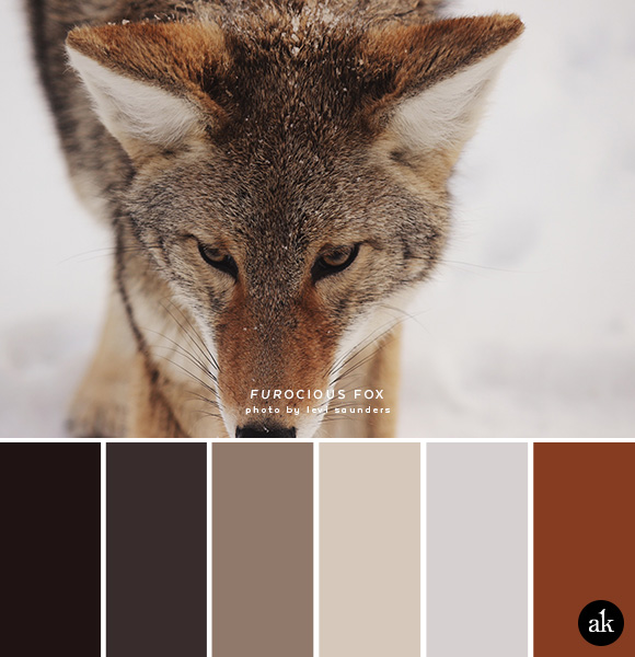 a fox-inspired color palette // dark brown, faded black, coyote tan, light tan, snow gray, fox red