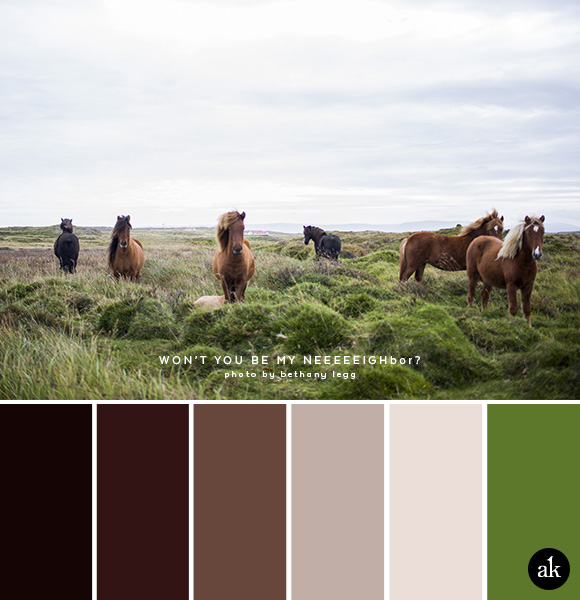 a horse-inspired color palette // browns, green