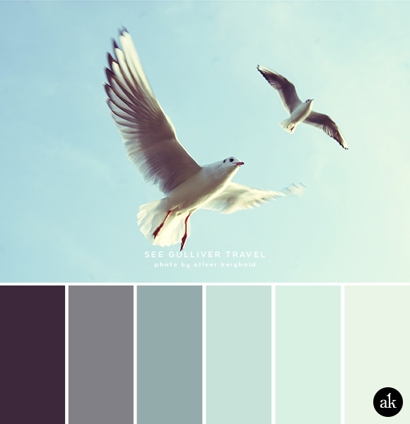 a seagull-inspired color palette // aubergine, gray, smokey blue, seafoam, mint, frost
