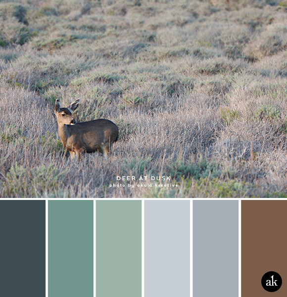 a deer-inspired color palette