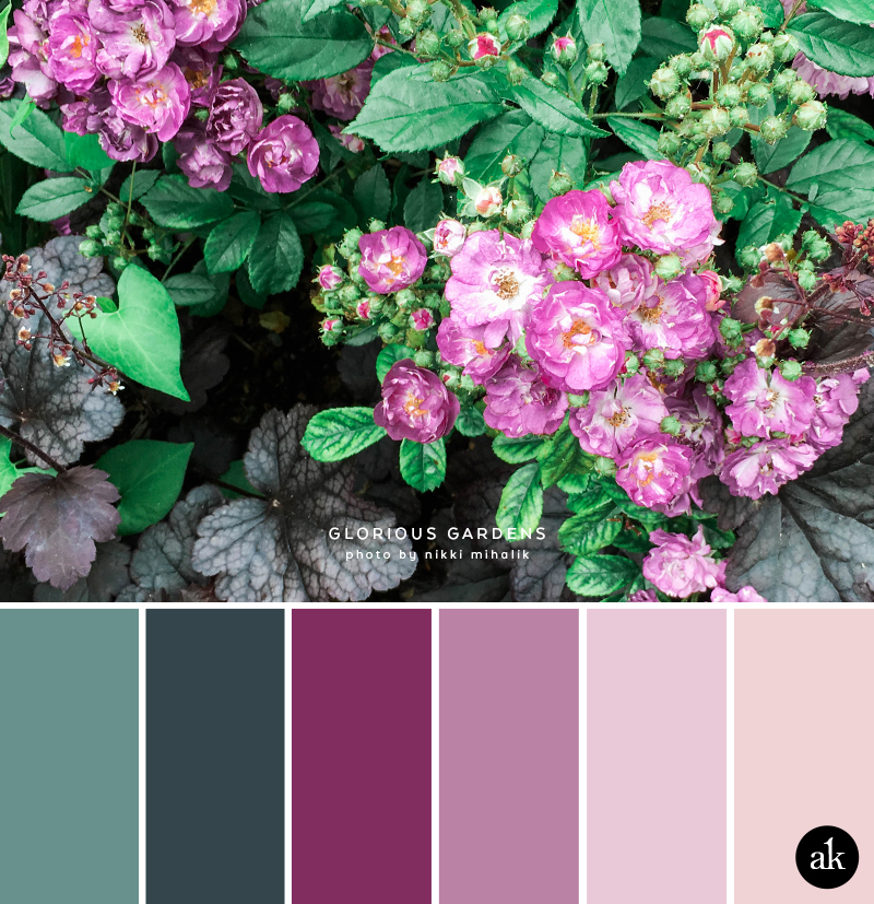 an English-garden-inspired color palette // blue-green, purple, red-violet, violet, pink